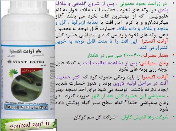 حشره کش اوانت اکسترا برای کنترل کرم غلاف خوار نخود 1