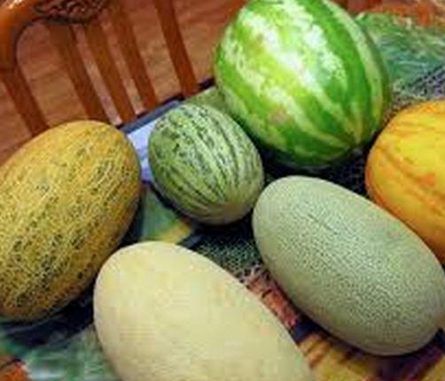 کشاورزی پایدار 9