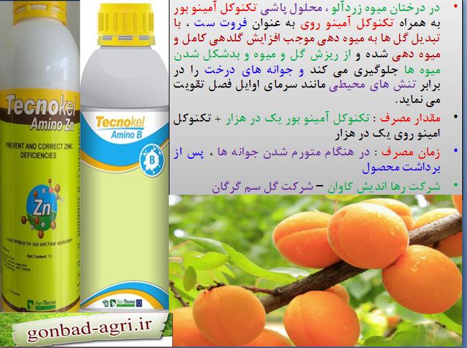 فروت ست برای درختان زردآلو با استفاده از تکنو کل آمینو بور و تکنو آمینو روی 33