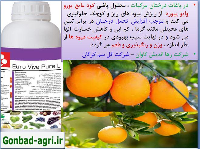 کود مایع یورو وایو پیوره موجب تقویت میوه دهی و کاهش ریزش میوه ها 3