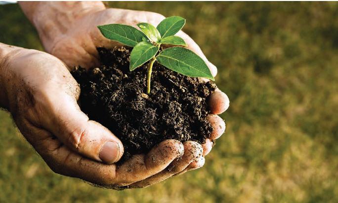 خاکشناسی اراضی زراعی 1